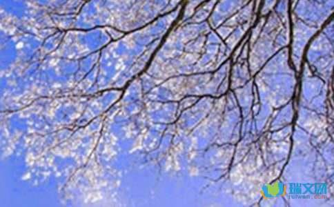 描写冬天的诗词分享