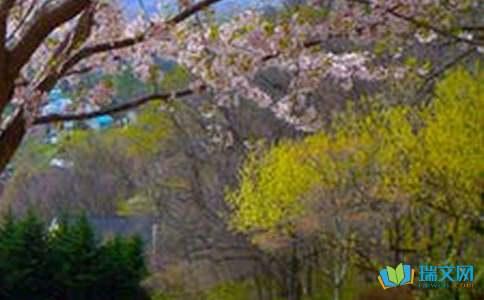 泉林山庄风景的作文
