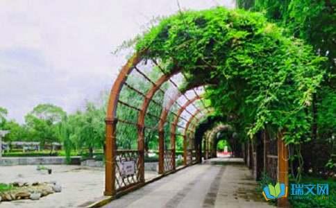 枣庄东湖公园学生作文
