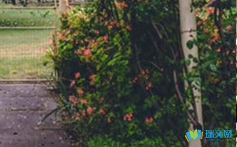 花园街1号歌词