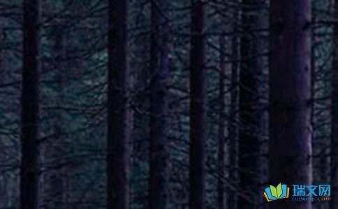 绿森林的童话故事
