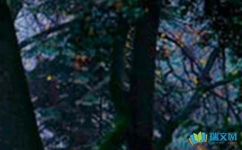 挪威的森林讀后感精選2篇